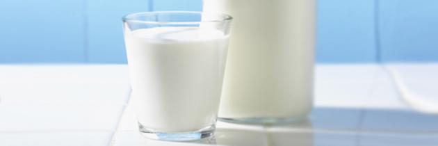 Intolerância à lactose ou Alergia a proteína do leite de vaca?